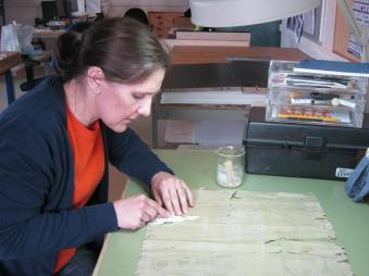Conwy Archive Service Conservator